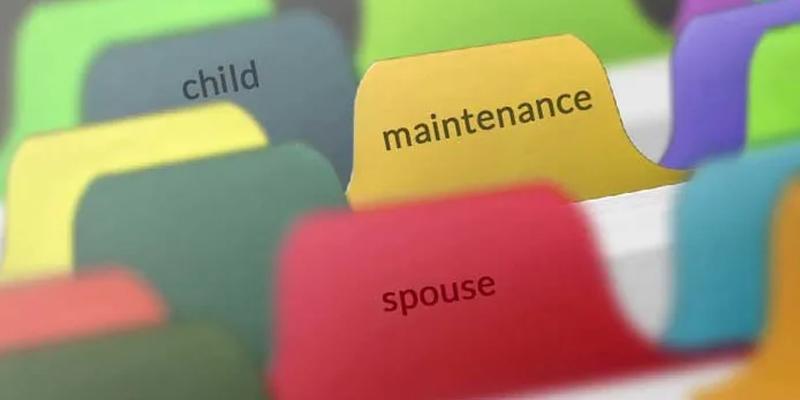 determining-maintenance-court-will-ask