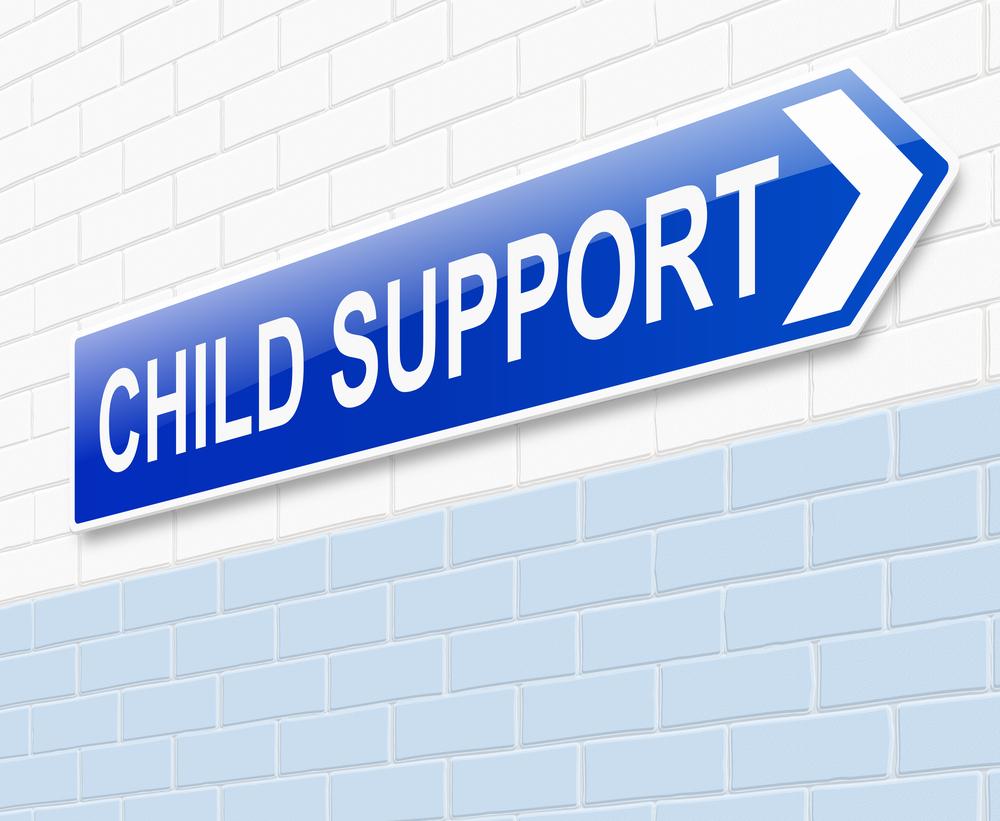 Free Worksheet Kansas Child Support Worksheet child support worksheet colorado laveyla com az elleapp